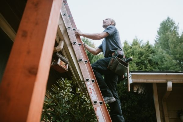 your home may still succumb to mold infestation of your roof